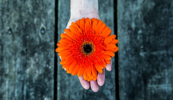 fibromialgia cure